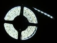 Cens.com ZHENG YUE ENTERPRISE CO., LTD. LED Light Strips