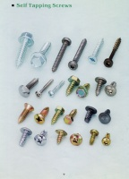 Cens.com PENGTEH INDUSTRIAL CO., LTD. Self Tapping Screws